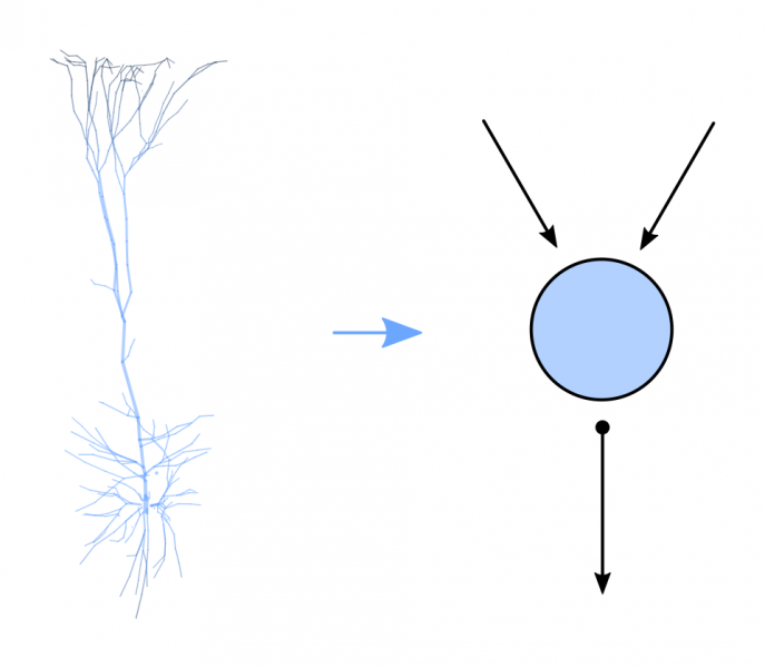 simplified-neuron